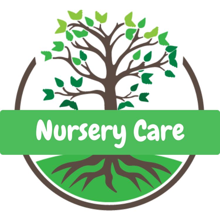 nursery care infant toddler