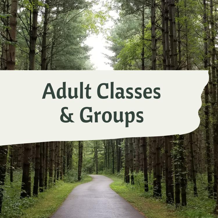adult classes groups spiritual formation discipleship faith